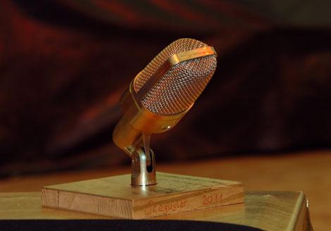 karaokef2011_mikrofon